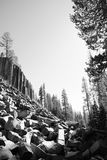 Devils Postpile and Trees Royalty Free Stock Images