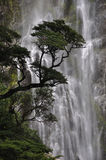 Devils Punchbowl Waterfall Stock Photography