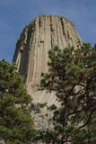 Devils Tower. From the Red Beds Trail royalty free stock photography