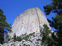 Devils Tower. Wyoming in the black hills Royalty Free Stock Image