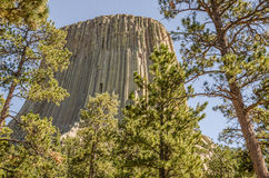 Devils Tower Close Up Royalty Free Stock Photo