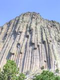 Looking up at Devils Tower National Monument in Wyoming. Devils Tower is 867 feet from its base to the summit. It stands 1,267 feet above the Belle Fourche River royalty free stock photos