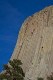 Devils Tower Royalty Free Stock Image