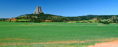 Devils Tower in northeast Wyoming Royalty Free Stock Photo