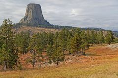 The Devils Tower over the forest. Landscape horizontal view stock photo