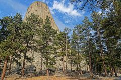 Devils Tower summit seen through the forest stock photos