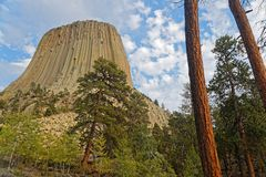 Devils Tower summit seen through the trees royalty free stock photos