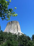 Devils Tower with Trees with Blue Sky stock photography