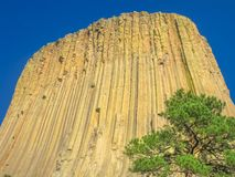 Devils Tower Wyoming stock photo