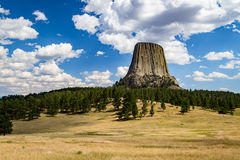 Devils Tower Wyoming. From a hill within the park royalty free stock images