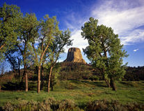 DevilsTower#17 Stock Photo