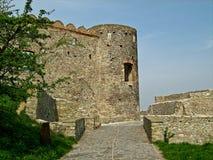 Devin Castle Bratislava, Slovakien Arkivbild