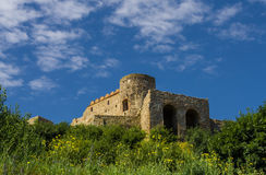 Devin castle in Slovakia Royalty Free Stock Image
