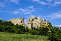Devin castle in Slovakia. Yellow flowers in the meadow Stock Photo