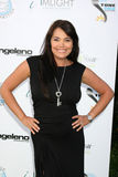 Devin Devasquez, Devin De Vasquez. LOS ANGELES - OCT 16: Devin DeVasquez arriving at the 2011 Stuntwomen Awards at the Skirball Cultural Center on October 16 stock image