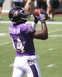Devin Hester, Sr Royalty Free Stock Photography