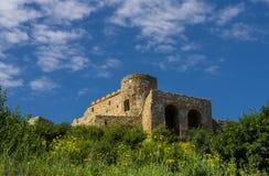 Devin slott i Slovakien Royaltyfri Bild
