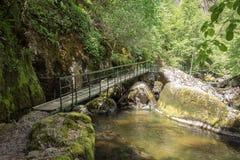 Devinska Eco i rzeka wlec Strouilitsa-Lukata, Bułgaria Fotografia Stock