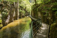 Devinska Eco i rzeka wlec Strouilitsa-Lukata, Bułgaria Zdjęcia Stock