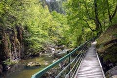 Devinska Eco i rzeka wlec Strouilitsa-Lukata, Bułgaria Obraz Royalty Free