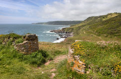 Devon coastline in spring. Stone walls and wild flowers at Great Mattiscombe Sand, Devon, England royalty free stock photo