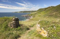 Devon coastline in summer. Old stone walls and wild flowers near Great Mattiscombe Sand, Devon, England royalty free stock photo