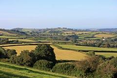 Devon Countryside Stock Foto