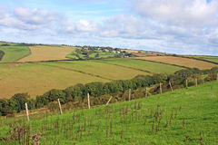 Devon countryside Royalty Free Stock Photos