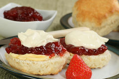 Devon cream scone Royalty Free Stock Photos