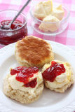 Devon cream tea Stock Images