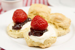 Devon cream tea. A traditional Devon cream tea Stock Image