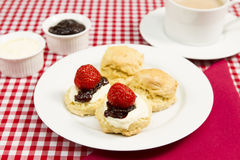 Devon cream tea. A traditional Devon cream tea Royalty Free Stock Images