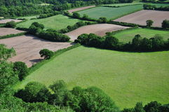Devon farmland. Open farmland viewed from the river torridge escarpment, in North Devon Stock Photos