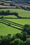 Devon farmland Royalty Free Stock Image