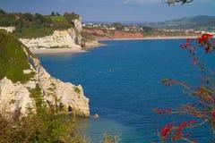 Devon klippor och kustlinje royaltyfri bild