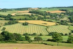 Devon. Landscape in East Devon, England Royalty Free Stock Image