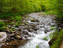 devon lynmouth nära watersmeet fotografering för bildbyråer