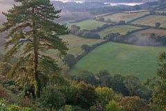 Devon Morning in Autumn Royalty Free Stock Photo