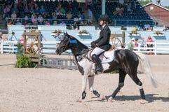 DEVON, PA - MAJ 25: Jeźdzowie wykonuje z ich koniami przy Devon Końskim przedstawieniem na Maju 25, 2014 Zdjęcia Stock