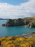 Devon seas. Devon blue seas Stock Images