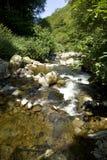 A Devon stream Stock Images