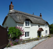 Devon Thatched Cottage. A typical village thatched roof cottage in Devon, England Royalty Free Stock Images