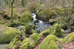 Devon torquay Stock Images