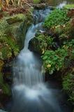 Devon waterfall Royalty Free Stock Photo