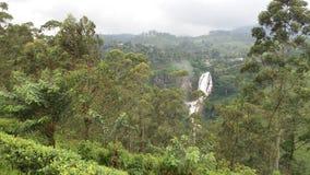Devon waterfall. Beautiful Devon waterfall royalty free stock photos