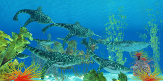 Devonian Doryaspis Fish Stock Image