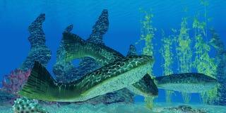 Devonian Drepanaspis Fish Royalty Free Stock Photos