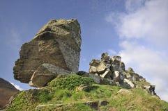 Devonian Limestone Rock outcrop Stock Images