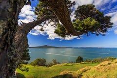 从Devonport,奥克兰,新西兰的朗伊托托岛和Hauraki海湾 免版税库存图片