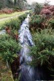 Devonport Leat, stara korytkowa przewożenie woda, Dartmoor Anglia Obraz Royalty Free